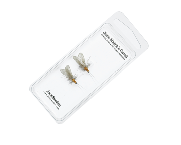 Immagine di 2 Pack Caddis Adult 3 Cinnamon Brown