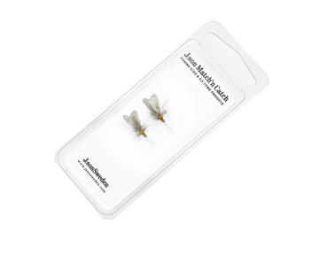 Immagine di 2 Pack Caddis Adult 4 Cinnamon Brown