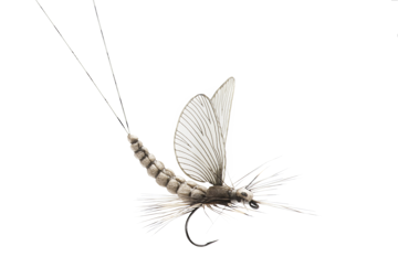 Picture of Mayfly Dun (Size 3)