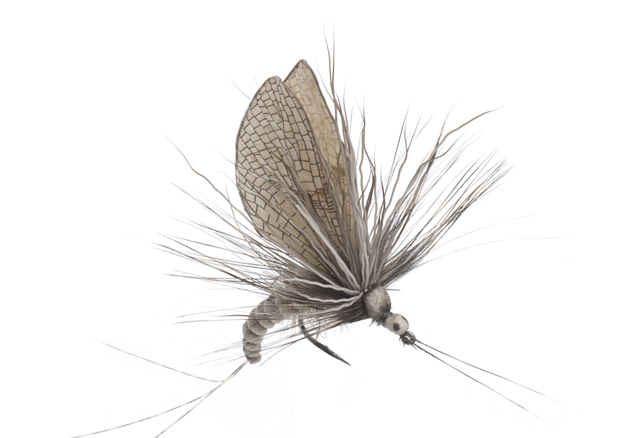 Picture of Mayfly Emerger (Size 2)