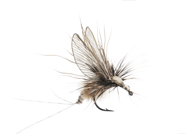 Picture of Mayfly Emerger (Size 3)