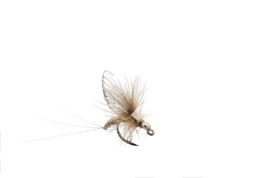 Immagine di Mayfly Emerger (Size 5)