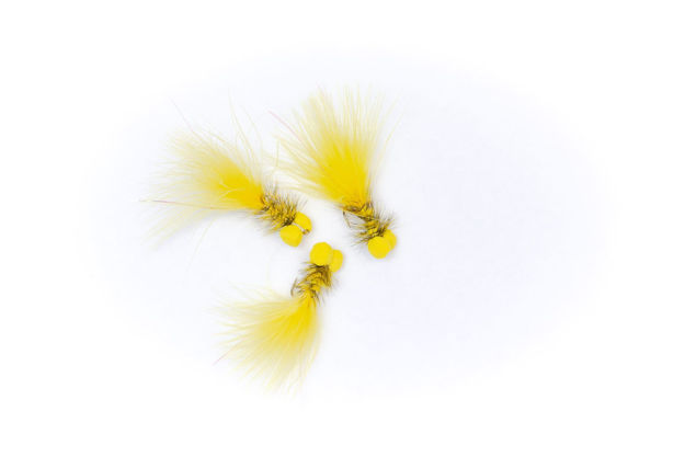 Picture of Booby Yellow #8