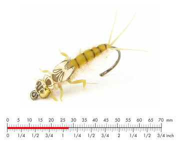 Immagine di Tungsten Mayfly Nymph 1 Light Olive