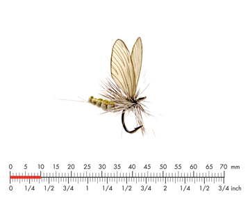 Picture of Mayfly Dun 4 Olive Grey