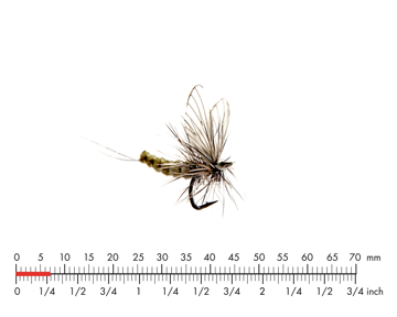 Picture of Mayfly Dun 5 Olive Grey
