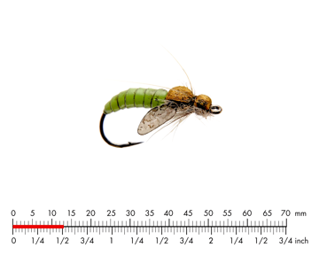 Immagine di Caddis Pupa 3 Green