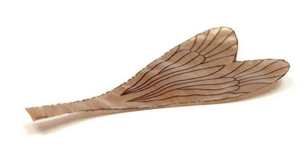 Picture of Realistic Wings C2 Brown #14